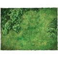 Terrain Mat Cloth - Fields - 120x120 2