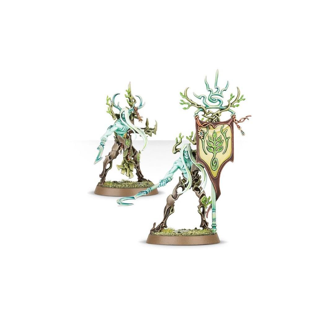 Buy Age of Sigmar : Order – Sylvaneth Tree-Revenant - Board
