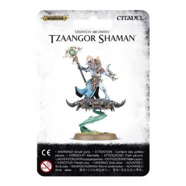 Age of Sigmar : Chaos - Tzeentch Arcanites Tzaangor Shaman