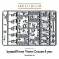 Hail Caesar - Early Imperial Romans: Veterans 2