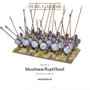 Hail Caesar - Macedonians: Royal Guard