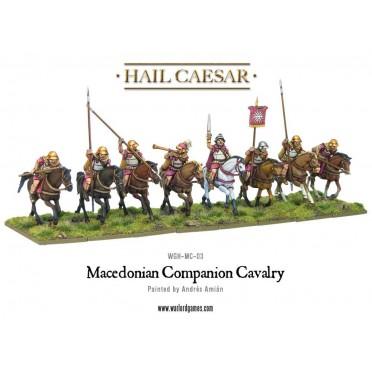Hail Caesar - Macedonian Companion Cavalry