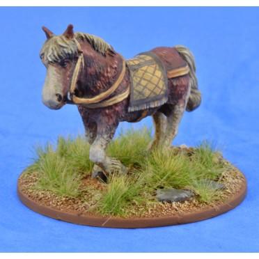 Saga - Civils et bétails - Poney 4