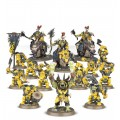 Age of Sigmar : Start Collecting - Ironjawz 1
