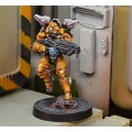 Infinity - Yu Ying - Tiger Soldiers (Spitfire / Boarding Shotgun) 4