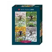 Puzzle - 4 Seasons - 2000 Pièces