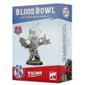 Blood Bowl : Card Pack - Special Plays 0