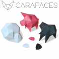 Carapaces By Doug : Rose 0