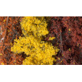 Woodland Scenics - Fine-Leaf Foliage Fall Mix 1