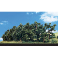 Woodland Scenics - Hedgerow : 6 cm 0