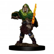 D&D Icons Elf Fighter Male