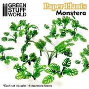 Plantes en Papier - Monstera