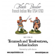 Tecumseh and Tenskwatawa, Indian Leaders